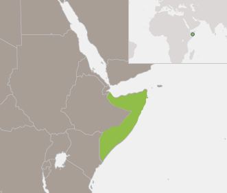 Somalia: The New Deal and Non-State Security Actors